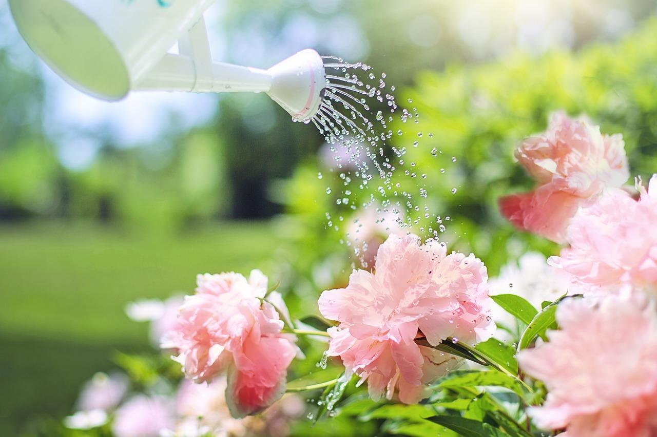 Entretien de jardin dans l'Ardèche